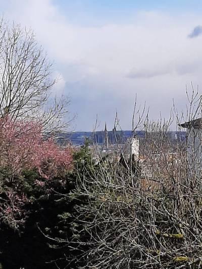 Metz (57050)
