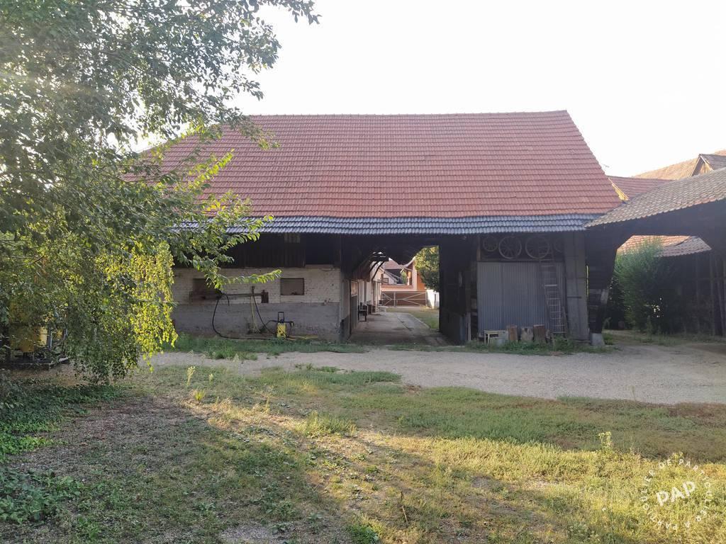 Maison Horbourg-Wihr (68180) 499.000€