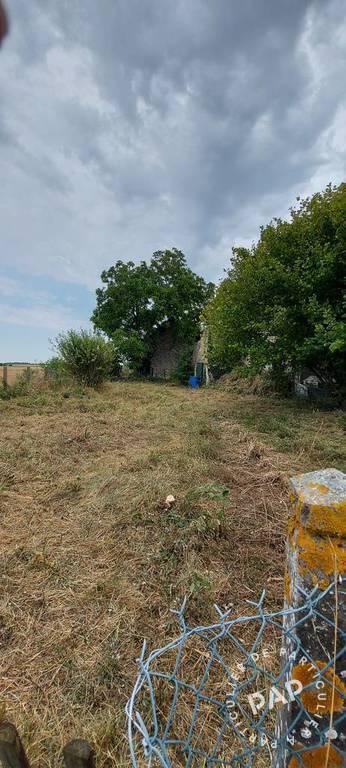 Vente Terrain Saint-Loup-Des-Vignes (45340)  55.000€