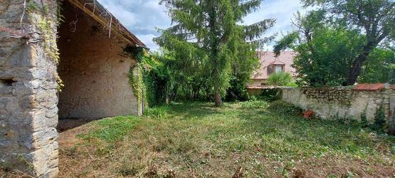 Saint-Loup-Des-Vignes (45340)
