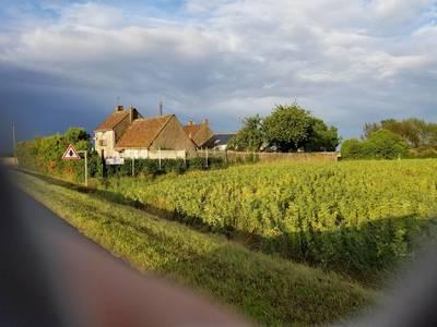 Saint-Denis-Sur-Loire (41000)