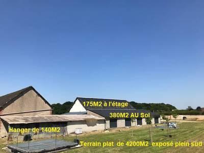 Notre-Dame-D'oé (37390)