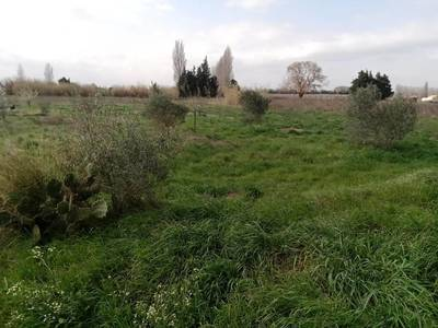 Beaucaire (30300)