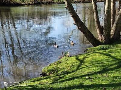 Pont-Audemer (27500)