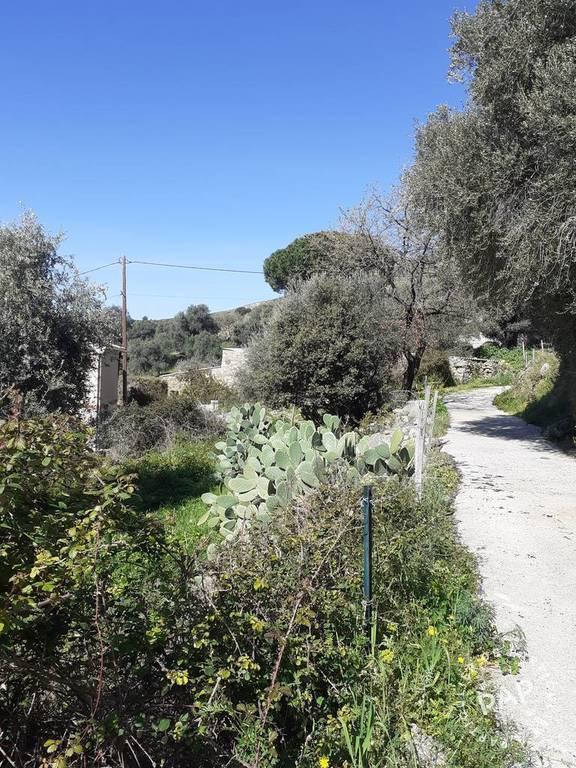 Vente Terrain Montegrosso (20214)  199.000€