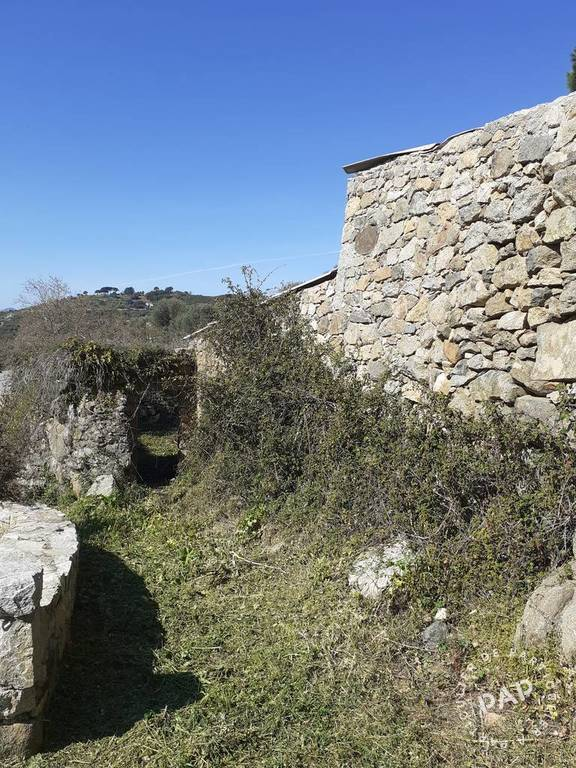 Vente Terrain Montegrosso (20214)