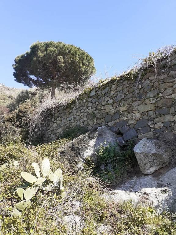 Terrain Montegrosso (20214) 199.000€