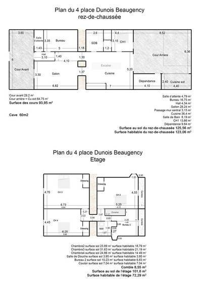 Beaugency (45190)