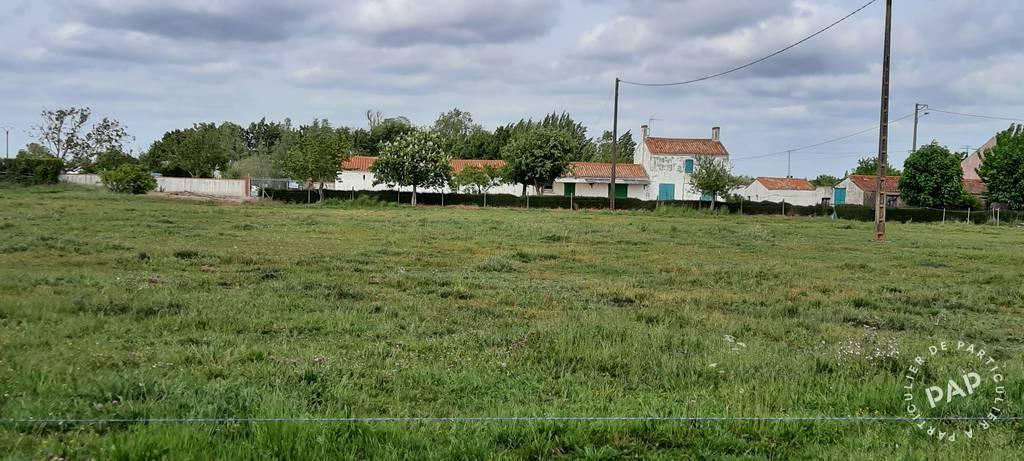 Vente maison 5 pièces Sainte-Radégonde-des-Noyers (85450)
