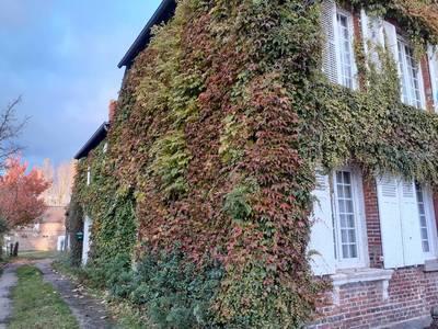 Saint-Julien-Le-Faucon (14140)