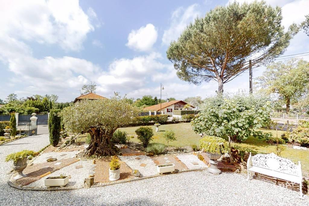 Maison 460.000€ 260m² Rion-Des-Landes (40370)