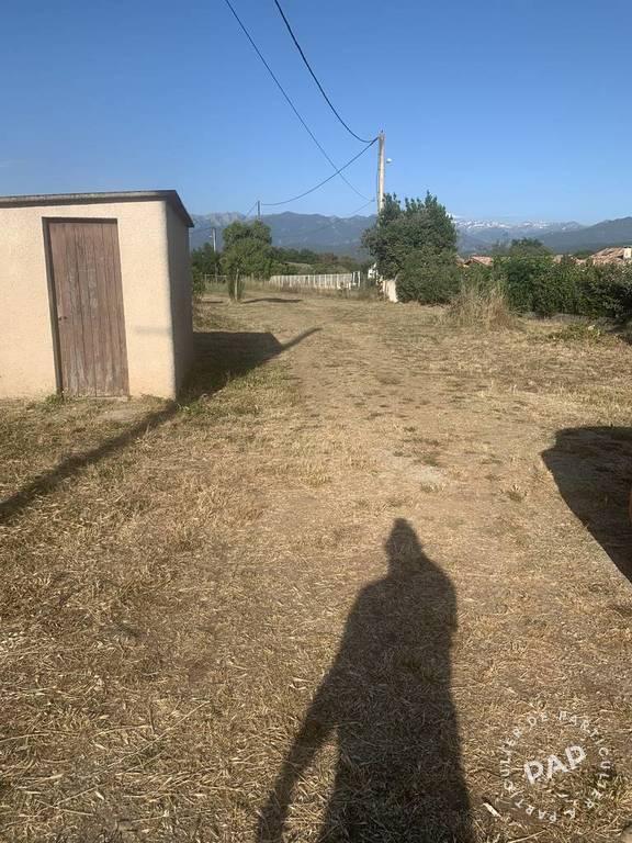 Vente maison studio Aghione (20270)