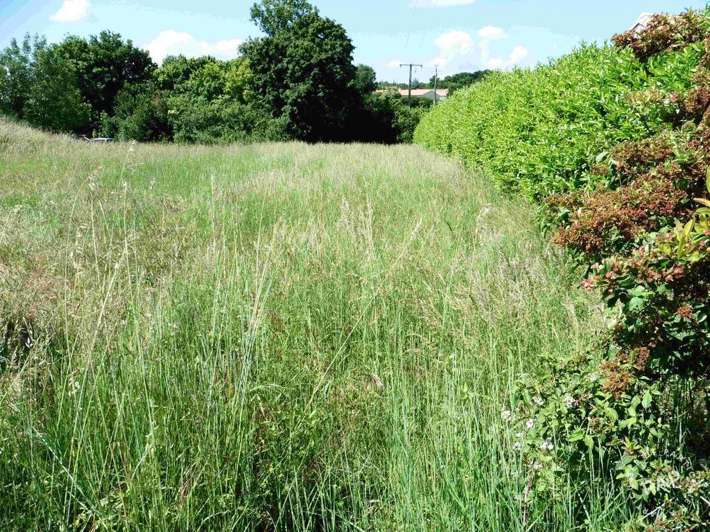 Vente Terrain Beauvoir-Sur-Niort (79360)