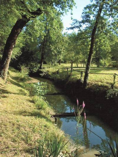Montcaret (24230)