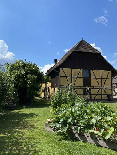 Hagenthal-Le-Haut (68220)