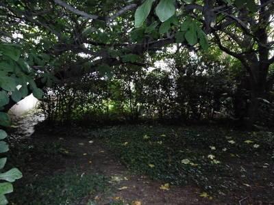 + Jardin 150M2;  Montrouge (92120)