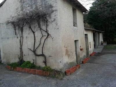 Salon-De-Provence (13300)