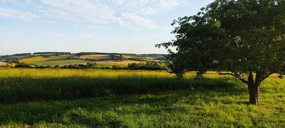 Dampierre-Sous-Bouhy (58310)